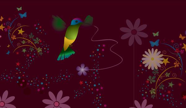 colibri en vector gratis