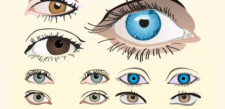 Ojos vectores gratis