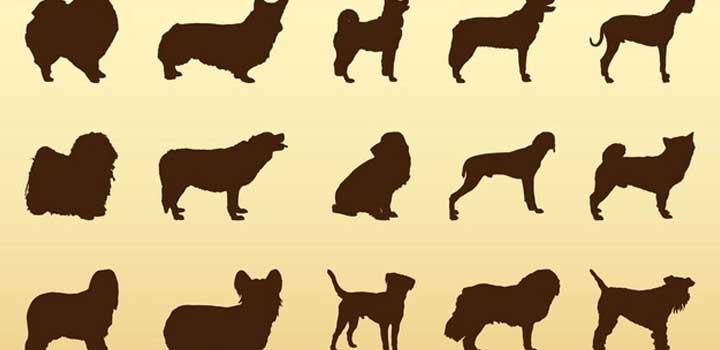 Siluetas perros vectores gratis